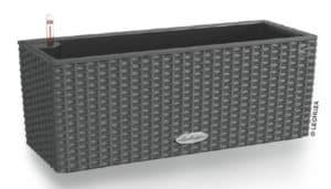 balconera kasse