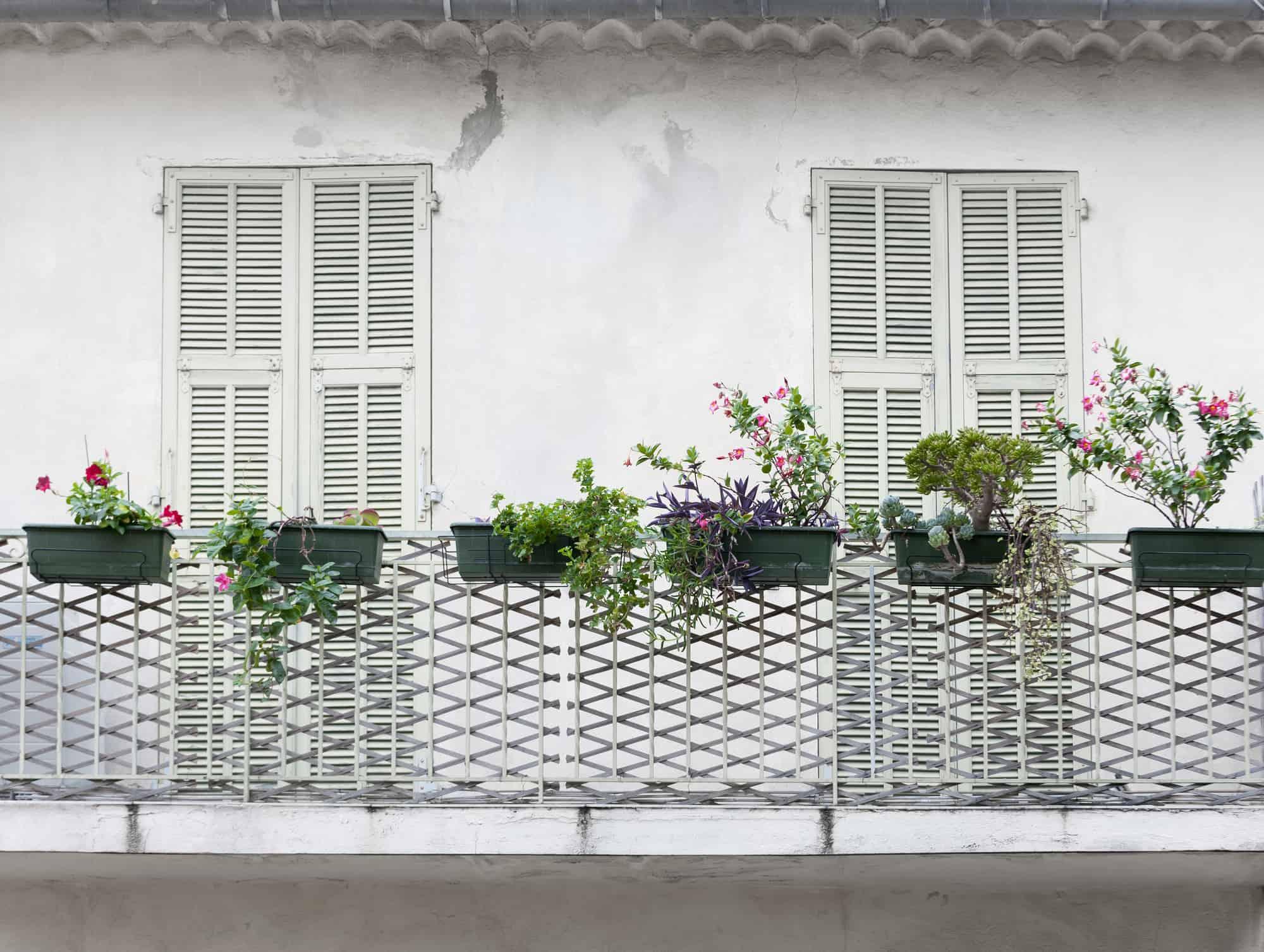 fransk balkon